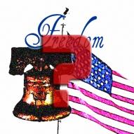freedom qstn