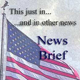 RL New Brief
