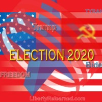 The LR Podcast Episode 20:  2020 Election Special
